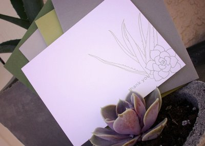 succulent note cards MStetson 2