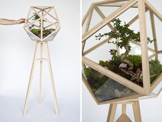 Terra Bonsai Terrarium by Fort Standard on MStetson