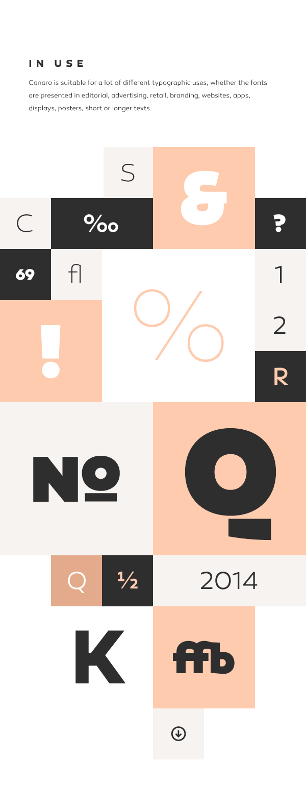 canaro typefamily typeface font by rene bieder